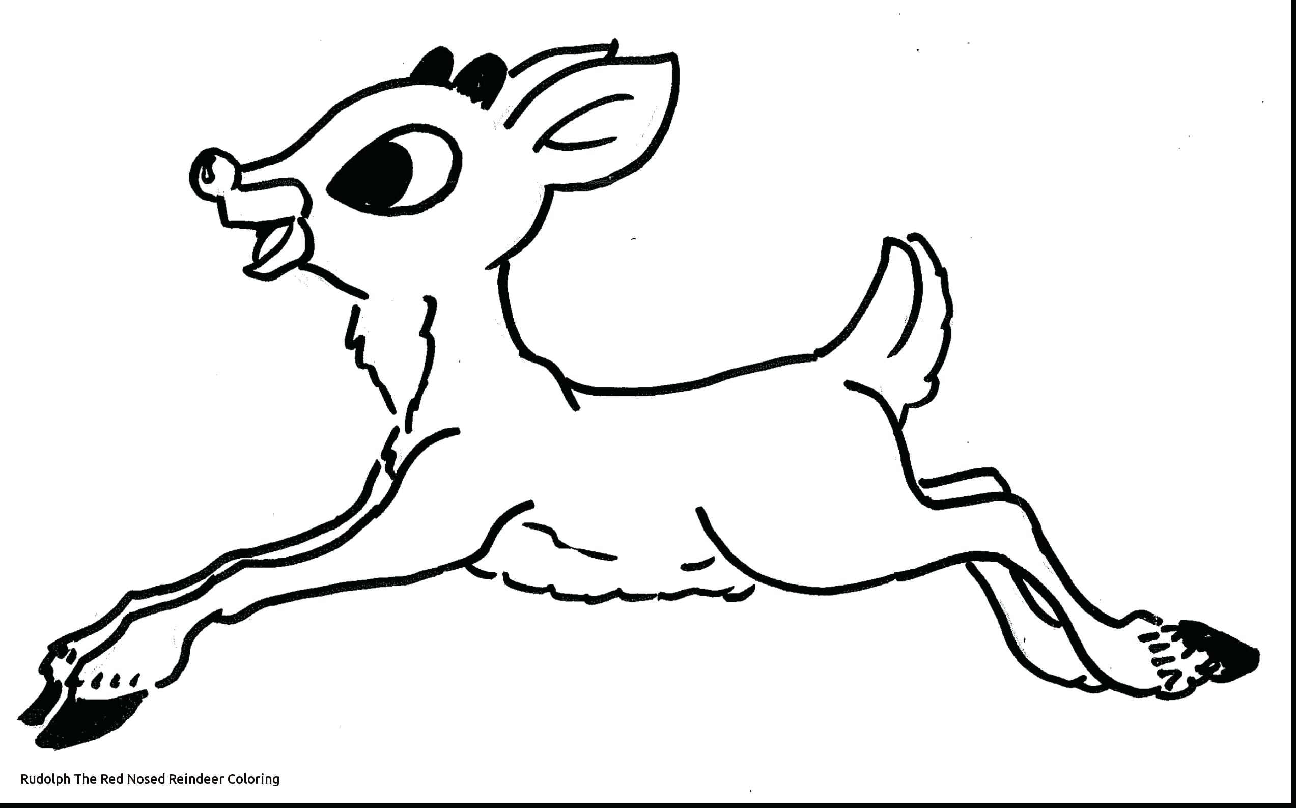 2546x1587 Reindeer Coloring Page Santa And The Red Nosed Printable Reindeer