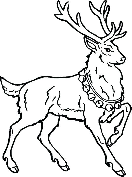 520x698 Rudolph Printable Coloring Pages Marvelous Design Ideas Reindeer