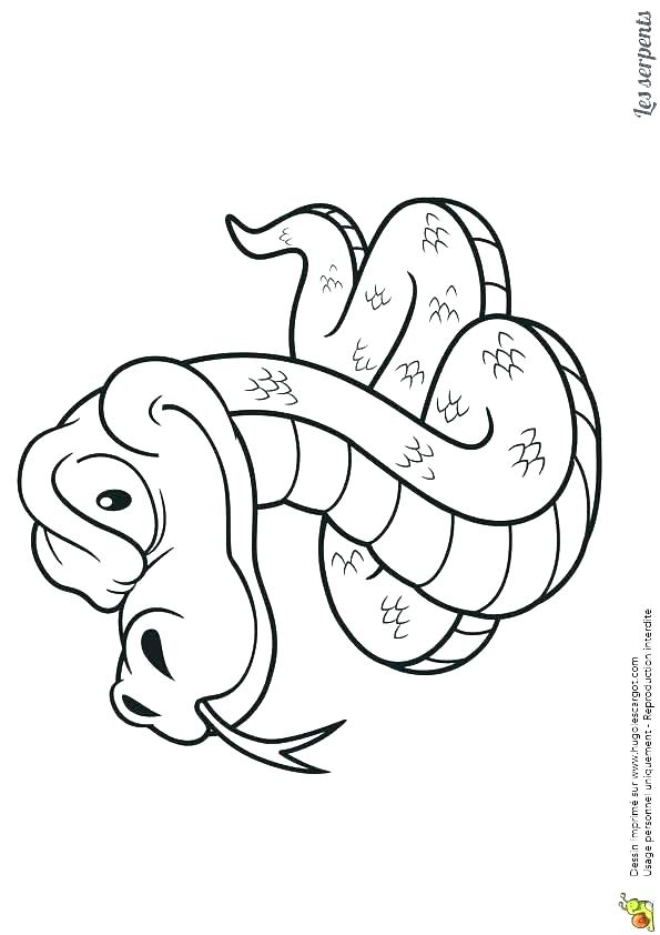 595x842 Reptile Coloring Pages Pictures Of Reptiles To Color Reptiles