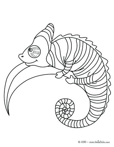 364x470 Reptiles Coloring Pages