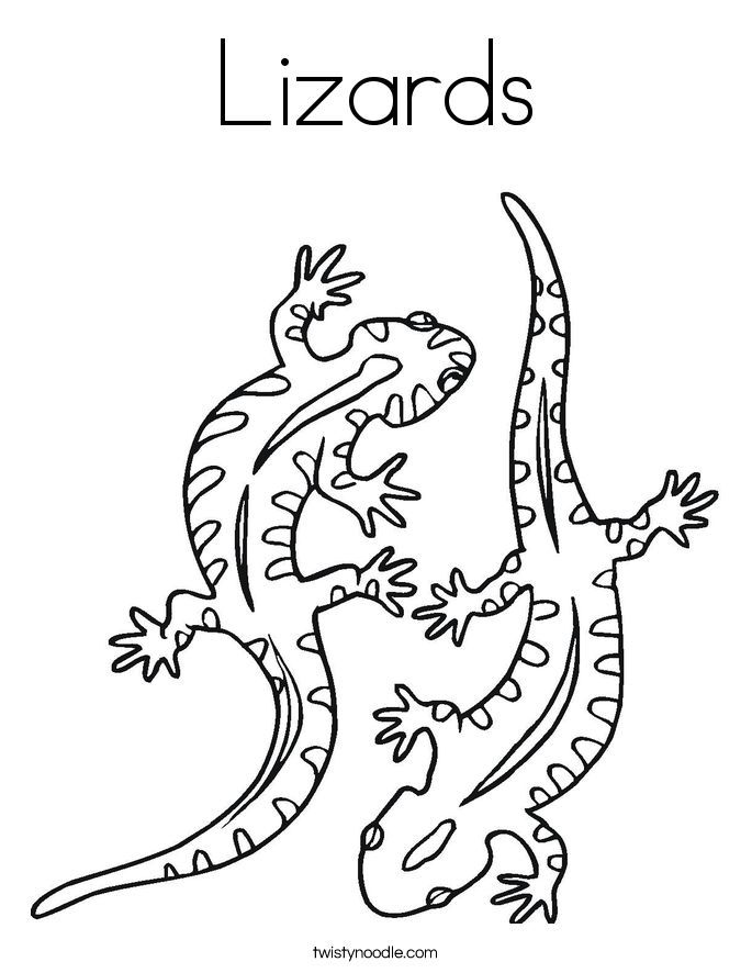 685x886 Lizards Coloring Page Png Ctok On Reptile