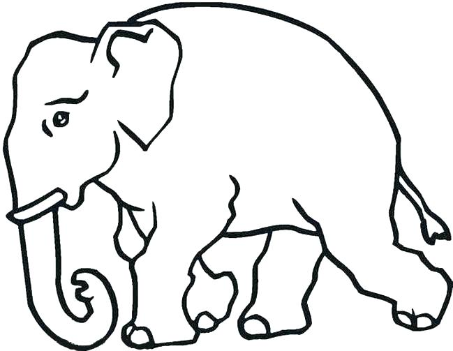 649x503 Coloring Page Elephant Coloring Pages Elephant Big Elephant