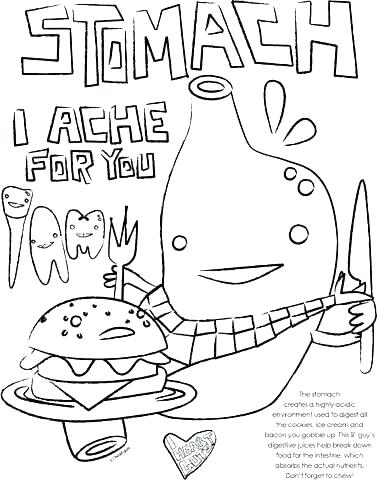 377x480 Circulatory System Coloring Pages Circulatory System Coloring