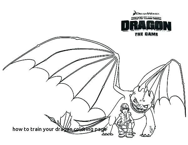 600x464 How To Train Your Dragon Toothless Colouring Pages Best Johns