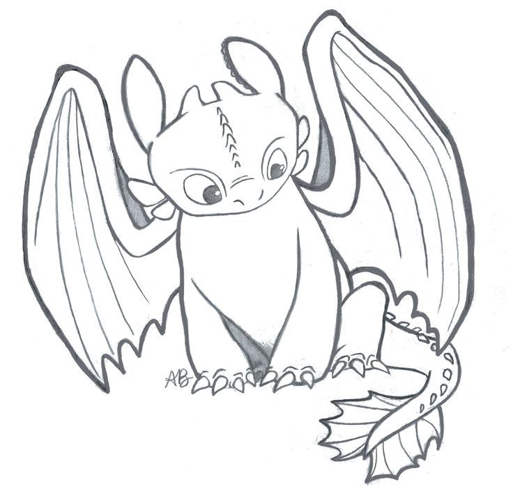 736x702 Toothless Dragon Coloring Pages