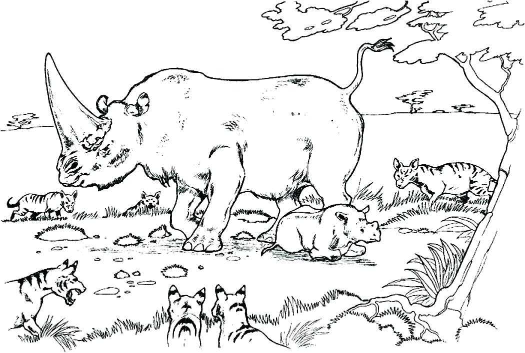 1050x707 Rhino Coloring Page Best Rhino Coloring Pages Images On Baby Rhino