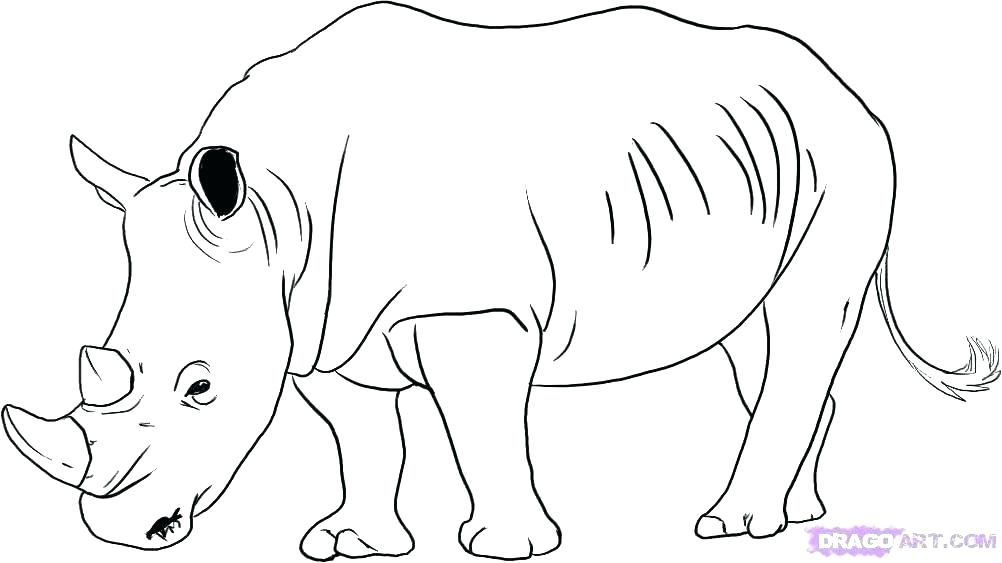 1002x563 Rhino Coloring Page Woolly Rhino Coloring Pages Rhinoceros