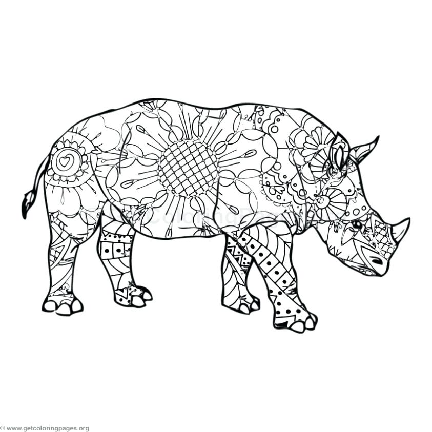 843x843 Rhino Coloring Pages Delightful Rhino Coloring Page Free Download