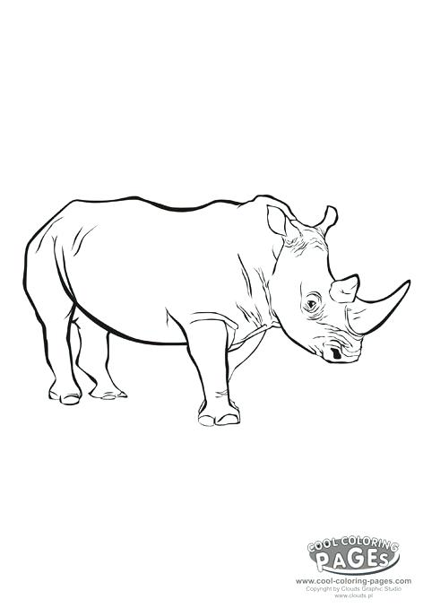 472x678 Marvel Rhino Coloring Pages Rhino Rhinoceros Coloring Animals My
