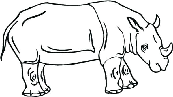 600x338 Rhino Coloring Pages Learn About Rhino Coloring Pages Batch