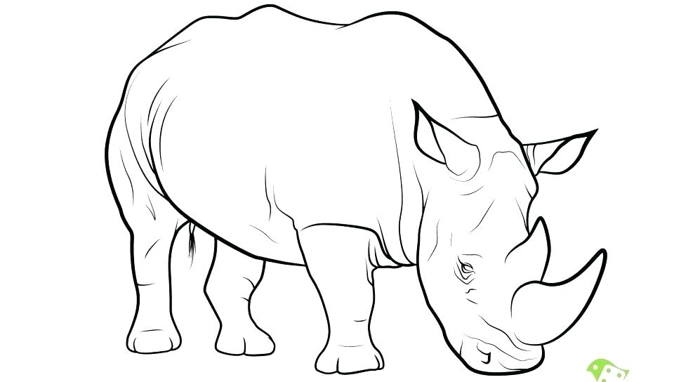 960x544 Rhino Coloring Pages Rhino Coloring Page Angry Rhino Coloring Page