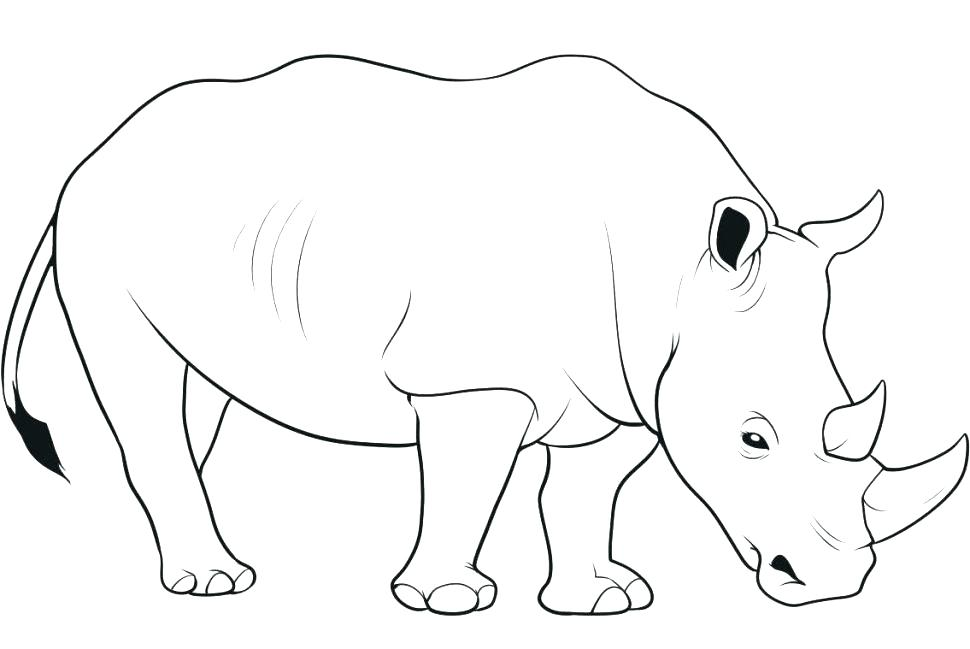 Rhinoceros Coloring Pages at GetDrawings | Free download