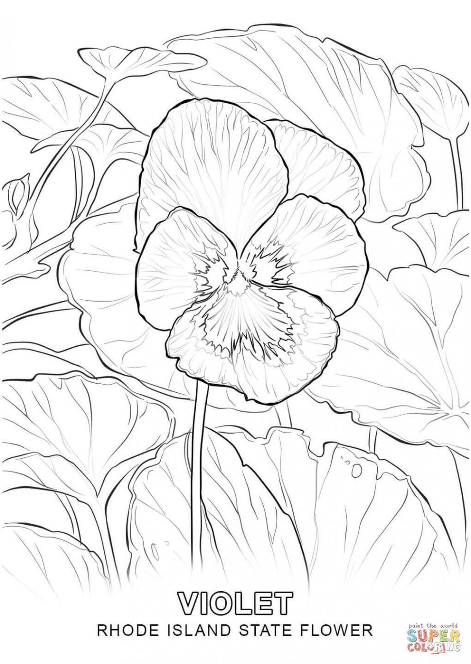 Rhode Island Coloring Pages