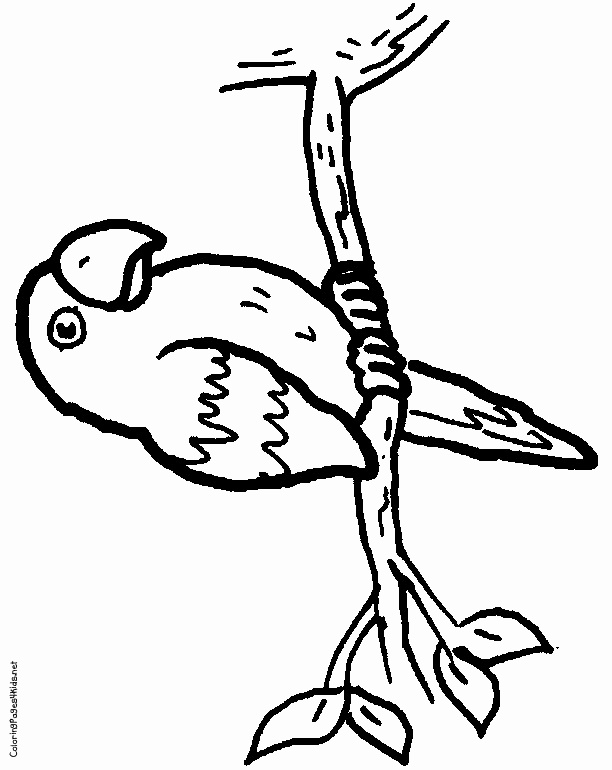 612x770 Rice Coloring Page Awesome Best Ausmalbilder Images