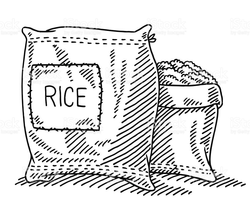 1024x878 Rice Drawing