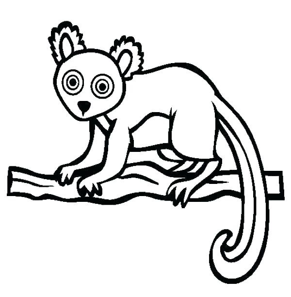 600x612 Lemur Coloring Page Lemur Coloring Page Lemur Coloring Pages Lemur