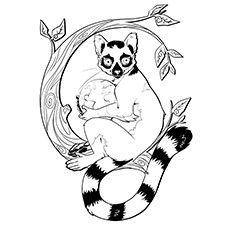 230x230 Indri Lemur Lemur Coloring Page