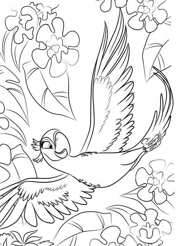 The Best Free Jewel Coloring Page Images Download From 19 Free Coloring Pages Of Jewel At Getdrawings