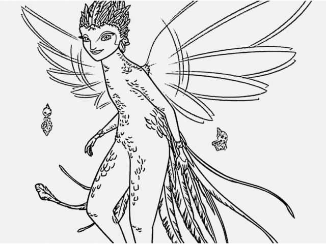 640x480 Tooth Coloring Pages Photographs Tooth Fairy From Rise