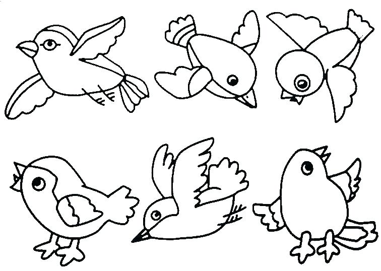 Robin Bird Coloring Pages