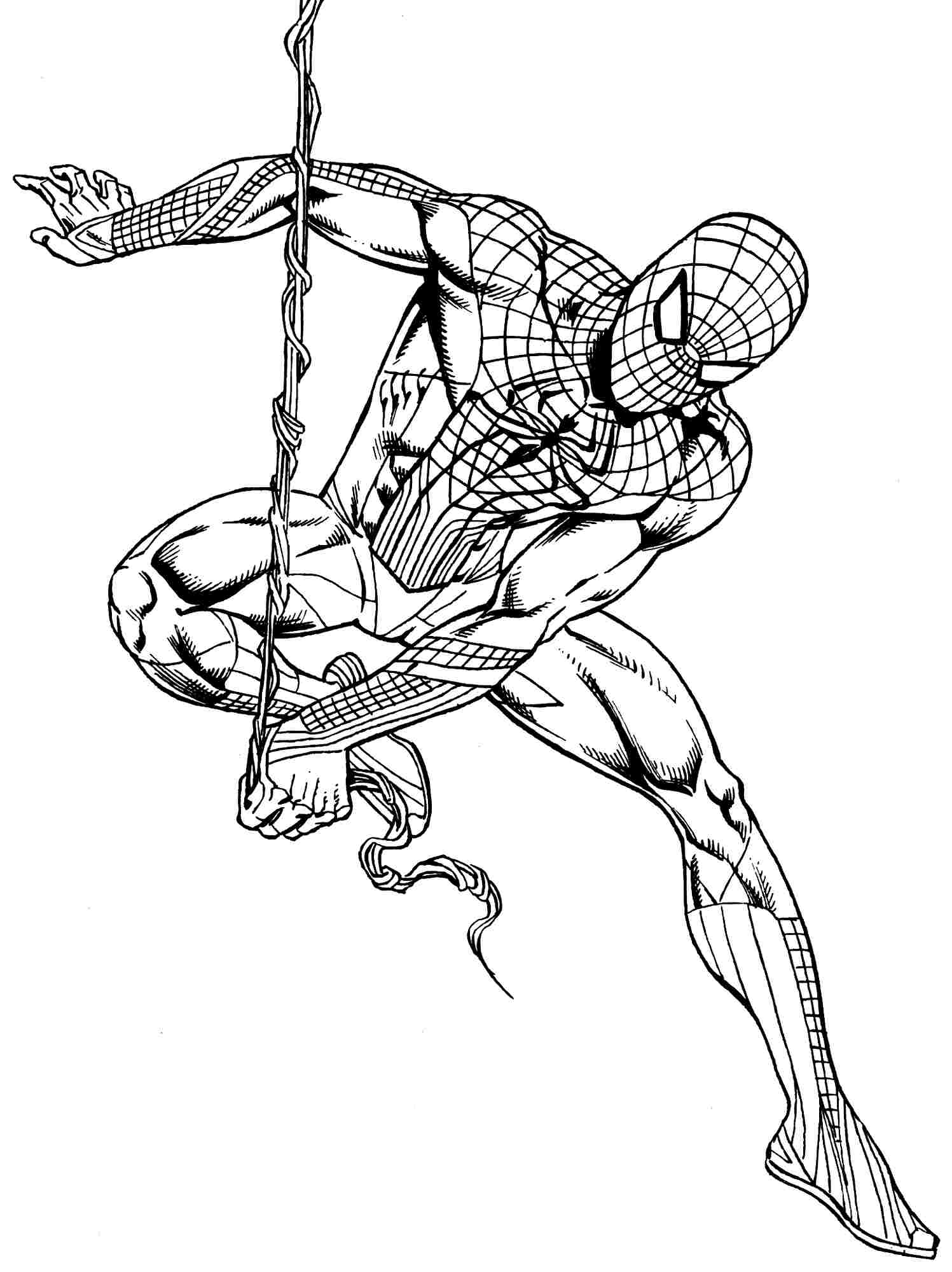 1497x2000 Download Or Print The Free Spiderman On Rope Coloring Page