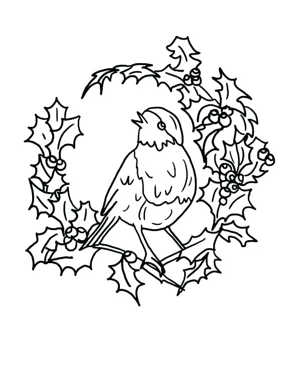 600x776 Robin Coloring Page Robin Bird Colouring Pages Printable Coloring
