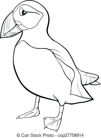 343x470 Rock Coloring Pages Rock Coloring Page Rock Coloring Pages Puffin