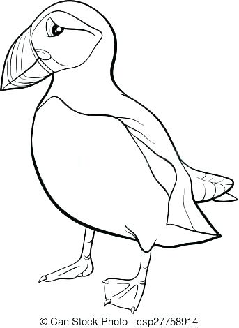 343x470 Rock Coloring Pages Rock Coloring Pages Puffin Coloring Page