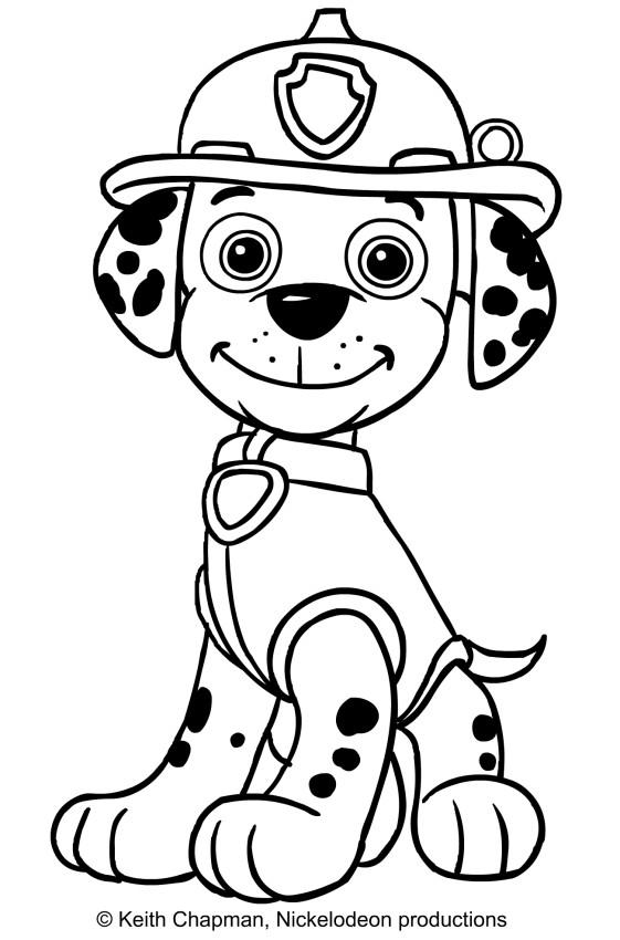 561x850 Skye Marshall And Rocky Coloring Page Showy Paw Patrol