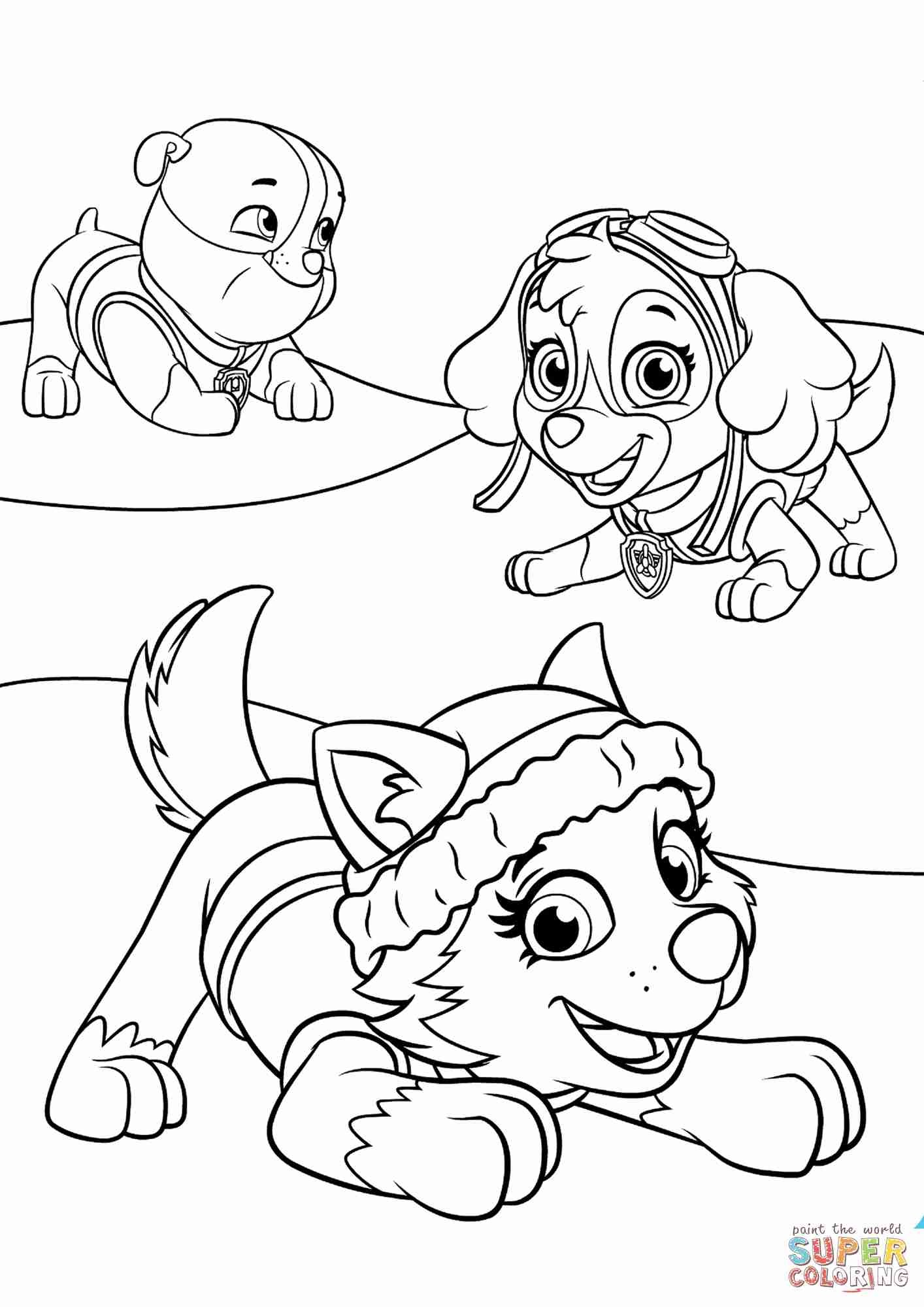 1414x2000 zuma coloring pages new paw patrol rocky skye and zuma coloring