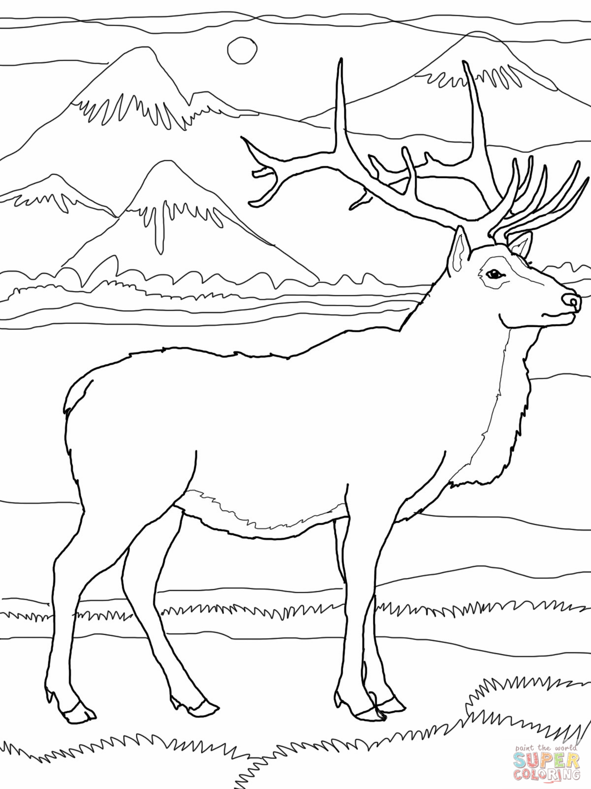 1200x1600 Rocky Mountain Elk Coloring Page Pages