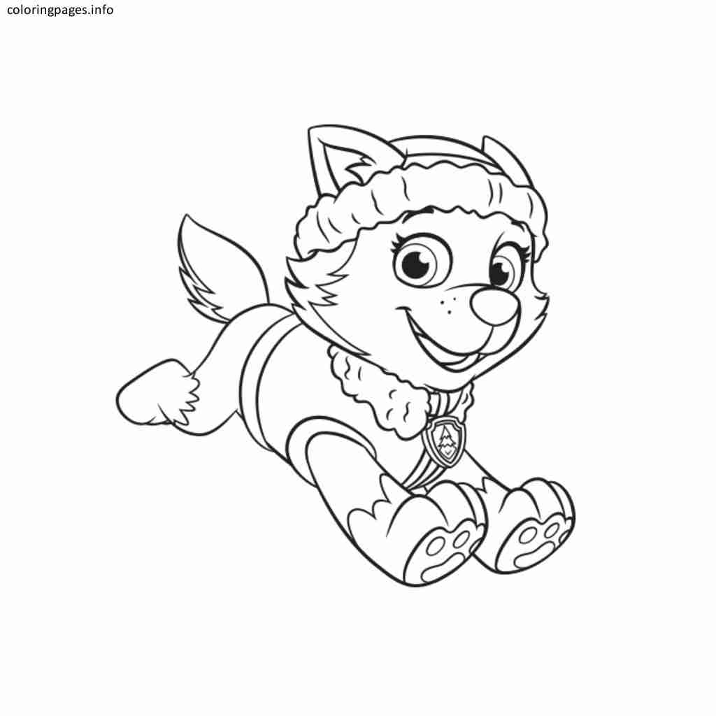 Rocky Paw Patrol Coloring Pages At Getdrawings Com Free For
