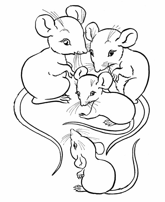 Rodent Coloring Pages
