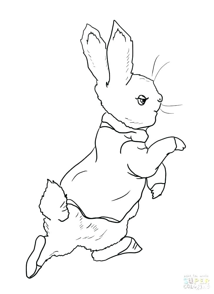 728x997 Roger Rabbit Coloring Pages Rabbit Coloring Book Rabbit Coloring