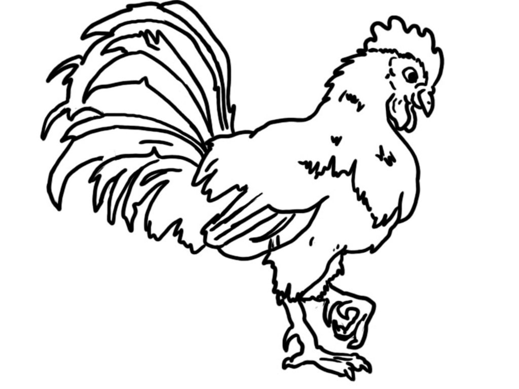 graphic about Rooster Template Printable referred to as Chicken Coloring Web pages For Young children at  Totally free