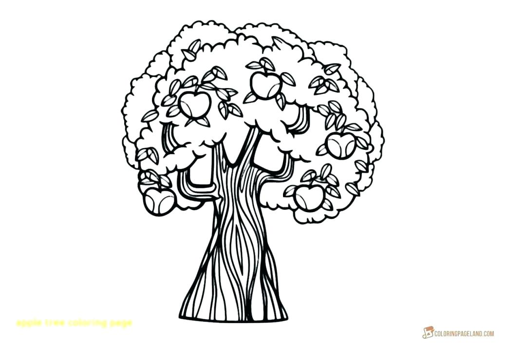 1043x709 Coloring Page Tree Fall Trees Coloring Pages Lds Tree Of Life