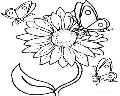 400x322 Realistic Flower Coloring Pages Page Image Images Coloring Trend
