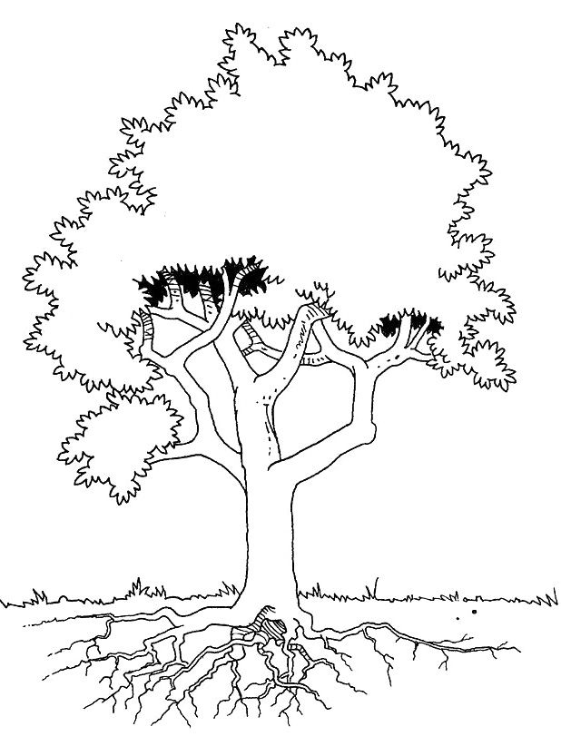 618x822 Best Kleurplaten Images On Coloring Books, Coloring