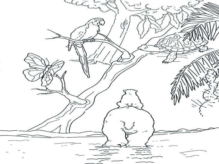 728x546 Tree Coloring Pages With Roots Oak Tree In The Night Coloring Page