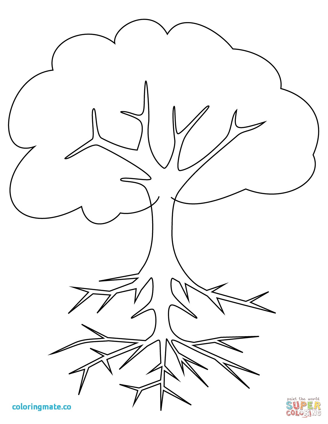 1082x1400 Tree Printable Coloring Page Awesome Fall Tree Coloring Page Free