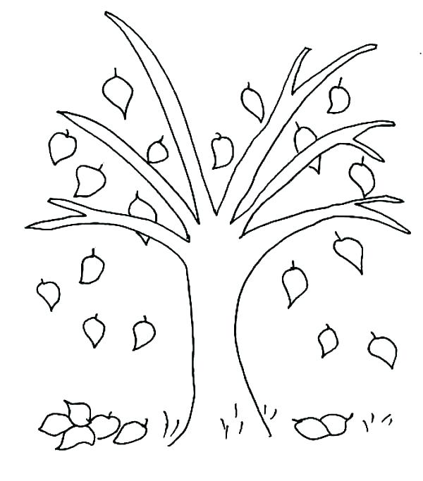 600x683 Tree Coloring Pages With Roots