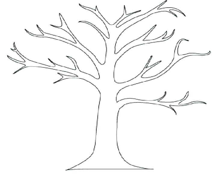 728x593 Coloring Page Of Tree Spring Tree Coloring Page Coloring Pages