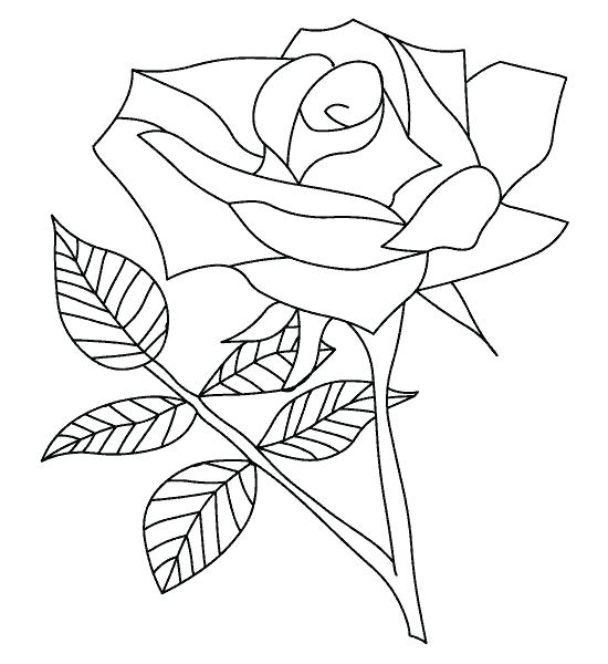 550x600 Printable Rose Coloring Pages Rose Coloring Sheets Printable