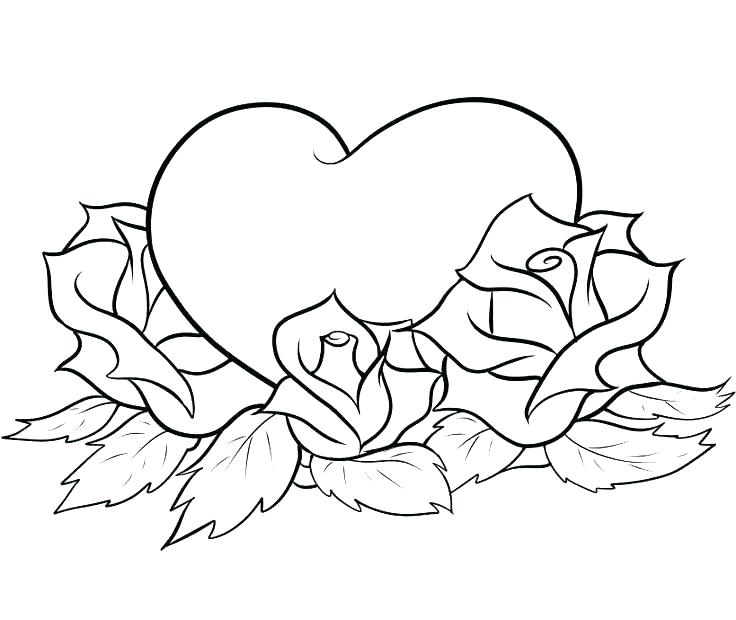736x620 Rose Color Pages Good Roses Coloring Pages New Free Of Printable