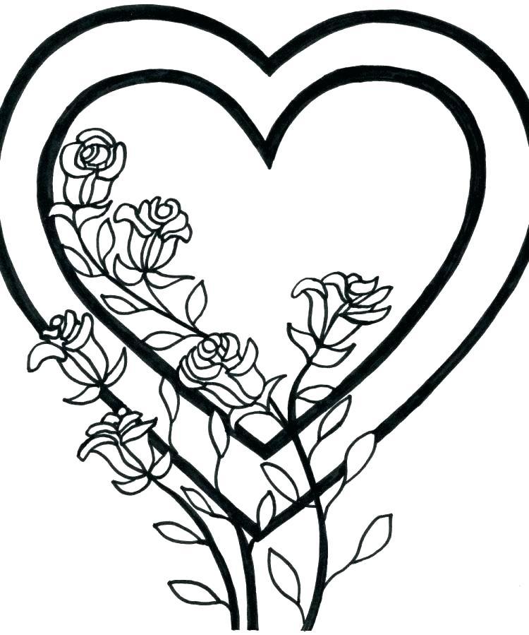 750x899 Rose Coloring Book