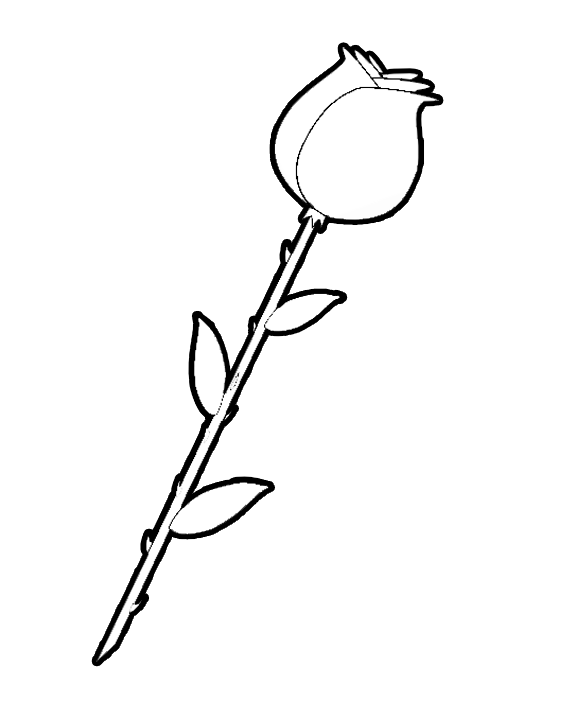 576x720 Coloring Rose Coloring Pages Easy In Conjunction With Rose Art