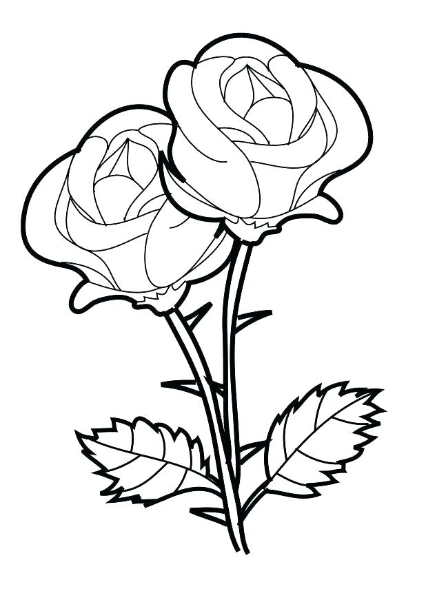 618x874 Rose Color Pages Free Rose Coloring Pages Rose Bouquet Coloring