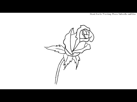 480x360 How To Draw A Lovely Rose Bud Simple Drawing For Kids Yzarts