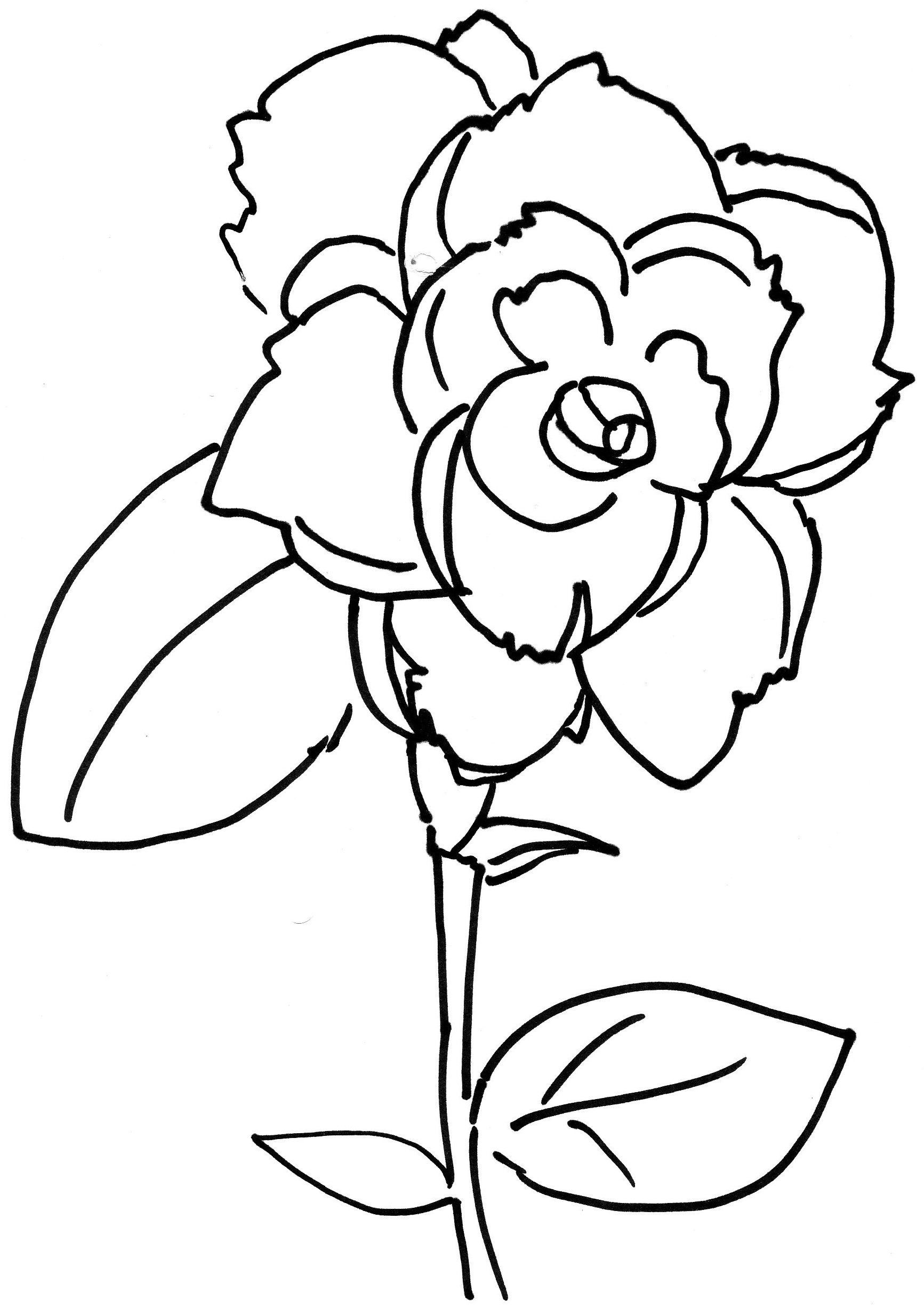 1733x2454 Marvelous Rose Bud Flower Coloring For Kids Unique Picture Of Page