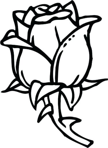 375x513 Rose Coloring Pages Rose Rose Coloring Page Rose Coloring Page